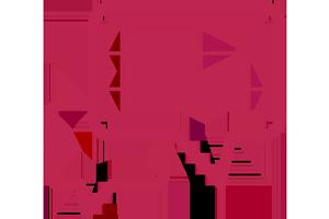 Kieferorthopädische Gemeinschaftspraxis Dr. M. Titz & Dr. (SYR) R. Abboud · Löhne · Halle (Westf.) · Icon Ausführliche Beratung