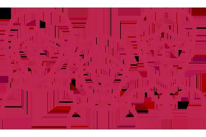 Kieferorthopädische Gemeinschaftspraxis Dr. M. Titz & Dr. (SYR) R. Abboud · Löhne · Halle (Westf.) · Icon Zahnspangen für Jung & Alt
