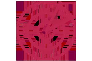 Kieferorthopädische Gemeinschaftspraxis Dr. M. Titz & Dr. (SYR) R. Abboud · Löhne · Halle (Westf.) · Icon Präzise Diagnose